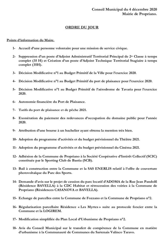 Réunion du conseil municipal du 4 décembre 2020