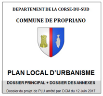 La révision du PLU (Plan Local d'Urbanisme)