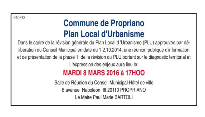 Révision du PLU - phase 1 : Réunion publique